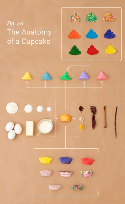 Anatomy-of-a-cupcake-575x935